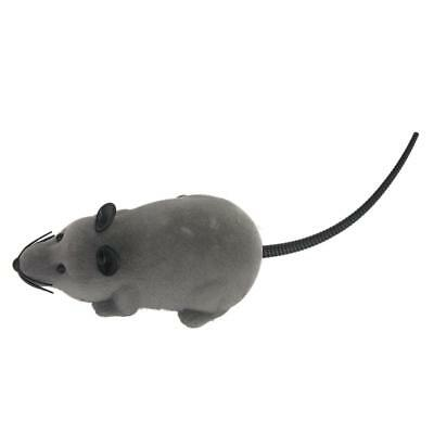 Mini Remote Control RC Mouse Mice With Controller Toy Gift for Cat Kids