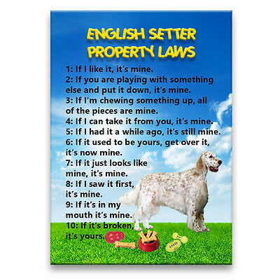 ENGLISH SETTER Property Laws FRIDGE MAGNET Steel Case Funny