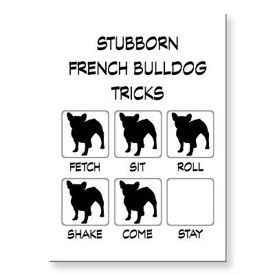 FRENCH BULLDOG Stubborn Tricks FRIDGE MAGNET Steel Case Funny