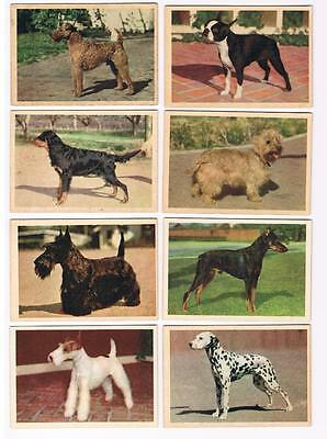 1955 Parkhurst V339-4 Dr. Ballard's Pet Foods Trading Cards Complete Set of 42
