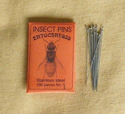 Entochrysis stainless mounting insect pins 100 size 1 entomology butterflies