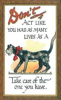 Don't Act Like You Have 9 Lives, From Dwig Postcard, Humorous, Comic, Magnet