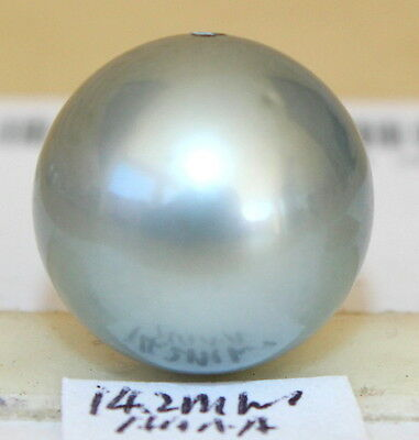 AAAA 14.2mm natural color  TAHITIAN SALTWATER PEARL HALF HOLE DRILLED