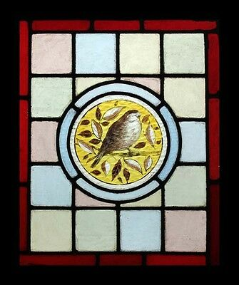 Beautiful Antique English Painted Bird In Foliage Victorian Stained Glass Window
