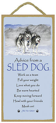 ADVICE FROM A SLED DOG puppy INSPIRATIONAL SIGN wood NOVELTY wall PLAQUE New