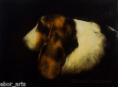 BASSET HOUND PORTRAIT : ORIGINAL OIL PAINTING : Dog Canine Art by David Andrews