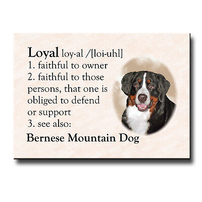 BERNESE MOUNTAIN DOG Dictionary Loyal FRIDGE MAGNET Berner