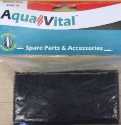Aquavital Avi 600 Replacement Filter Sponge 9325136059946