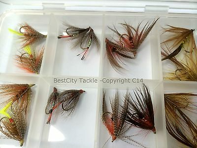 Fly Fishing IRISH DABBLERS 16 FLY FREE BOX Size 10/12  Trout Flies Pack#314