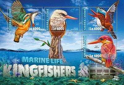 SIERRA LEONE Kingfishers SRL16311a 2016 MNH STAMP