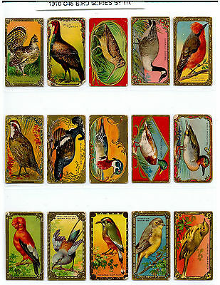1910 C45 BIRD SERIES by Imperial Tobacco Co. - Complete Set of 30
