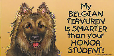 My BELGIAN TERVUREN is SMARTER than your HONOR STUDENT car/fridge MAGNET 4X8