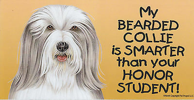 My BEARDED COLLIE is SMARTER than your HONOR STUDENT car/fridge MAGNET 4X8