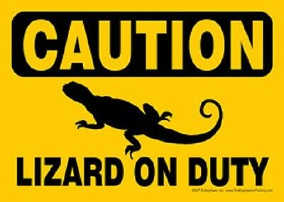 YELLOW CAUTION sign LIZARD ON DUTY Novelty MAGNET pet animal Reptile MADE IN USA