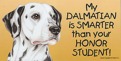My DALMATIAN is SMARTER than your HONOR STUDENT car MAGNET 4X8