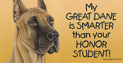 My GREAT DANE is SMARTER than your HONOR STUDENT car/fridge MAGNET 4X8