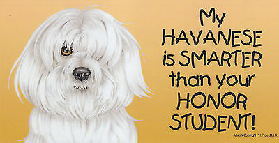 My HAVANESE is SMARTER than your HONOR STUDENT car/fridge MAGNET 4X8