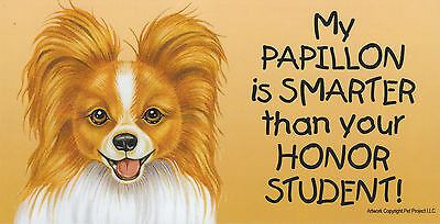 My PAPILLON (reddish) is SMARTER than your HONOR STUDENT car MAGNET 4X8