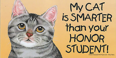 My CAT is SMARTER than your HONOR STUDENT car/fridge MAGNET 4X8 (grey tabby)