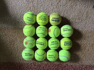 15 Used Tennis Balls - dog toys, beach cricket etc FREEPOST DELIVERY