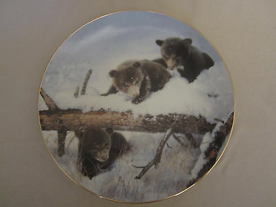 BLACK BEAR collector plate THE CUB SCOUTS Nancy Glazier WINTER WILDLIFE