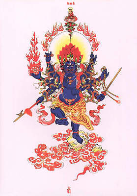 "26"" Blessed Anti Evil Thangka Scroll:vajra Ucchusma Who Purify The Unclean ="