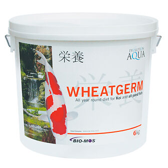 Evolution Aqua Wheatgerm 6000g (3-4mm/Small)