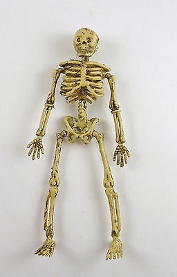 Dollhouse Miniature Aged Skeleton, somewhat poseable
