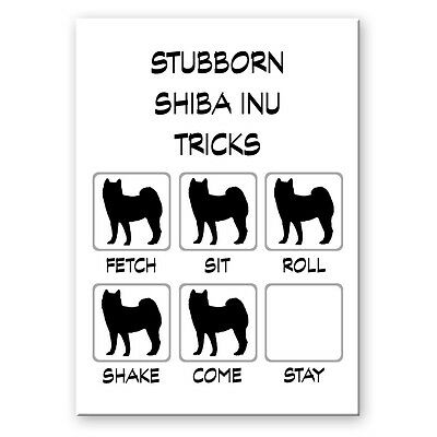 SHIBA INU Stubborn Tricks FRIDGE MAGNET New DOG