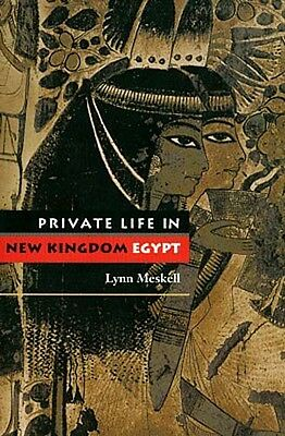 NEW Ancient Private Life in New Kingdom Egypt Sexuality Ethnicity Society Family