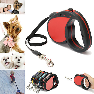 5M Long Retractable Dog Pet Lead Tape Training Rope Leash Extendable Max 30kg