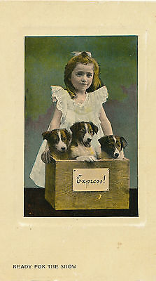 1910 Color Photo 3 Puppies & Little Girl Postcard, Deep River, WA to Astoria, OR