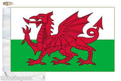 Wales Courtesy Boat Flag (Roped & Toggled)