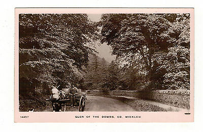 Glen Of The Downs .county Wicklow .old R.p. Postcard