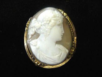 """Antique Gold-Filled Gold Large SHELL CAMEO Brooch/Pin 2-1/2"""" x 1-3/4"""""""