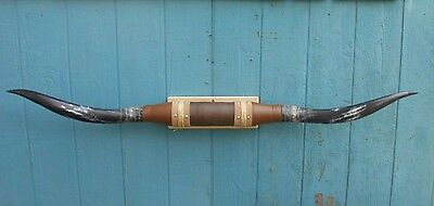 "MOUNTED STEER HORN NEW 5 feet 3 1/2""  WIDE TEXAS LONGHORN BULL POLISHED WITH,COW"