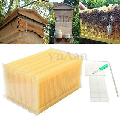 6pc Beehive Flowhive Bee Auto Raw Honey Frames For Beekeeping Harvesting Honey
