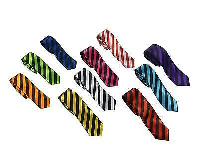 Mens Stripe Ties Neon Unisex Stag Night Hen Parties School Girl St Trinians Goth
