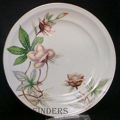 MEITO china WOODROSE pattern DINNER PLATE 10-1/4""