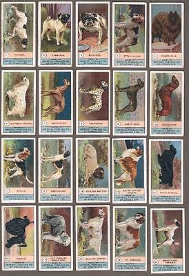 1924 ITC C7 Dog Series Tobacco Cards Complete Set of 23