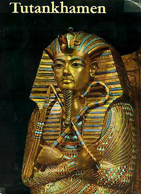 Tutankhamen Life Death Pharaoh Youth Coronation Family Death 9 Year Reign Color