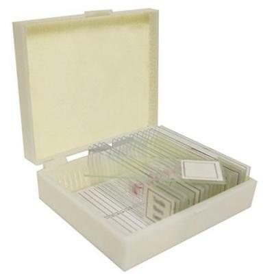 Walter Products B17113 Prepared Slide Set-Apologia Biology (Pack of 16) New