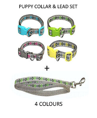 Little Rascals Nylon Adjustable Small Dog Or Puppy Collar Lead Set 4 Colours