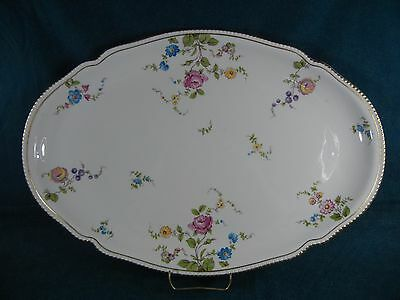 "Castleton China Sunnyvale Huge Turkey Size Discounted Oval 19"" Serving Platter"