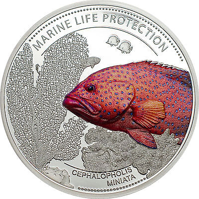 2016 CORAL HIND FISH - Marine Life Protection Series Proof Silver Coin Palau $5