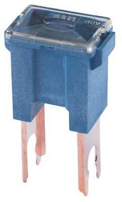 100A Fast Acting Blade Plastic Fuse 32VDC