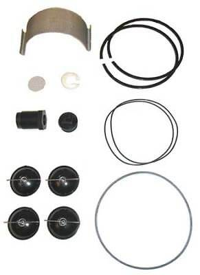 Fuel Transfer Pump Repair Kit FILL-RITE 5200KTF1828