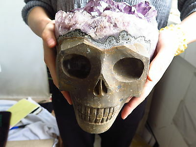 Natural Amethyst Cluster Crystal Carved Crystal beautiful Skull Healing &MH12