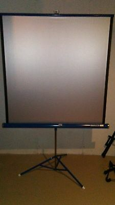 Da-Lite Silver Flyer  40 x 40 Projection Projector Screen Vintage