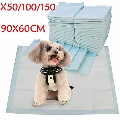 90X60Cm Extra Large Training Trainer Train Puppy Pads Dog Cat Toilet Pee Wee Mat